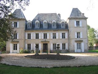 21 bedroom Chateau with Internet Access in Cambounet-Sur-le-Sor - Cambounet-Sur-le-Sor vacation rentals