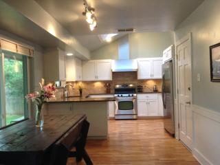 Gorgeous home 8 min from downtown greenbelt access - Austin vacation rentals