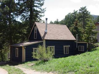 Blue Bark Cottage - Allenspark vacation rentals