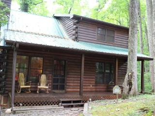 Ellijay Mountain Log Cabin: 2BR/2BA, Sleeps 4 - Ellijay vacation rentals