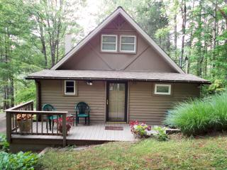 Shenandoah Mountain Chalet Luray Virginia - WIFI - Luray vacation rentals