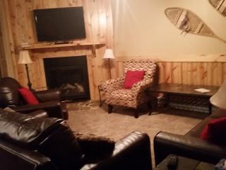 Snowshoe Summitt 307D - Snowshoe vacation rentals