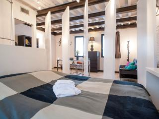 Black&White Lucca Apartment Citycenter AC and WiFi - Lucca vacation rentals