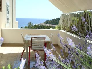 Studio apartment with private terrace - Cove Zarace (Milna) vacation rentals