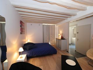 Nice Bed and Breakfast with Internet Access and Television - Senlis vacation rentals