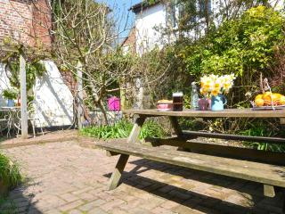 Charming listed cottage, garden. Small dog welcome - Brede vacation rentals