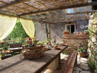 Cozy 3 bedroom Farmhouse Barn in Camaiore - Camaiore vacation rentals