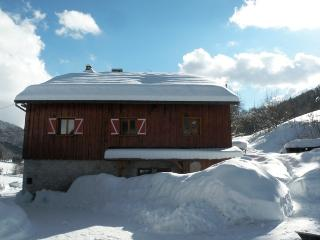 Nice Chalet with Internet Access and Satellite Or Cable TV - Megevette vacation rentals