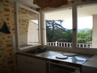 Cozy 1 bedroom Greoux les Bains Condo with Short Breaks Allowed - Greoux les Bains vacation rentals