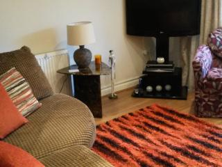 Apartment Witney Oxfordshire near the Cotswolds - Witney vacation rentals