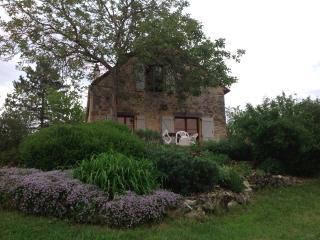 Stylish, 1830s Stone Barn- Walk to the Dordogne! - Sarlat-La-Caneda vacation rentals