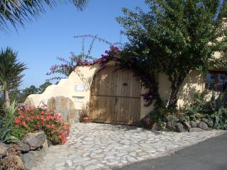 Finca in Icod de los Vinos, Tenerife - Icod de los Vinos vacation rentals
