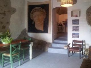 Casa nel borgo a castelnuovo val di cecina - Castelnuovo di Val di Cecina vacation rentals