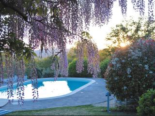 Villa Renata , relax in the Tuscany countryside - Monticiano vacation rentals