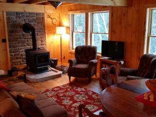 Bright 3 bedroom Bakers Mills Lodge with Internet Access - Bakers Mills vacation rentals