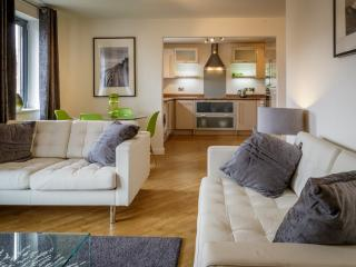 Swansea Marina Apartment - Swansea vacation rentals