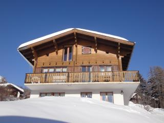 Sunny 1 bedroom Bellwald Chalet with Cleaning Service - Bellwald vacation rentals