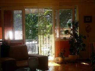 Charming Condo with Internet Access and Central Heating - Sarajevo vacation rentals