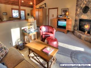 Nice House with A/C and DVD Player - Boone vacation rentals