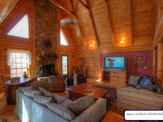 Hummingbird Log Cabin - Banner Elk vacation rentals