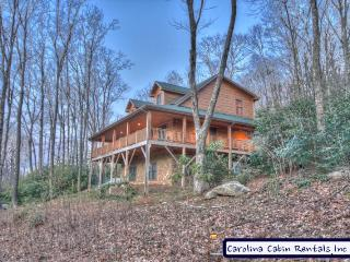 5 bedroom House with Internet Access in Banner Elk - Banner Elk vacation rentals