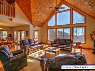 Wildlife Manor - Boone vacation rentals