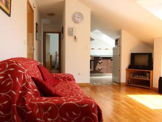 Modern apartment in Rias Baixas Spain (España) - Santiago de Compostela vacation rentals