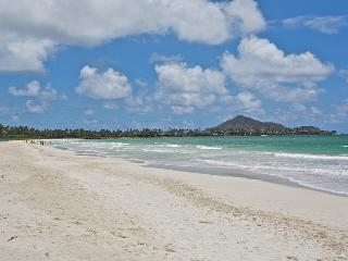 Perfect House with Internet Access and Dishwasher - Kailua vacation rentals