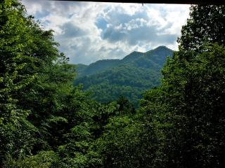 Rural Retreat Just Minutes from Downtown - Waynesville vacation rentals