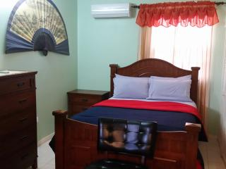Elegant, Cozy and Comfortable Apartment - Kingston vacation rentals