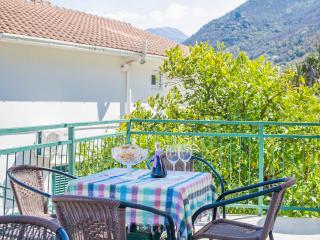 Apartments Daria - One Bedroom Ap. with Balcony 1 - Kotor vacation rentals