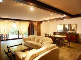 Magnificent apartment I - Mediglia vacation rentals