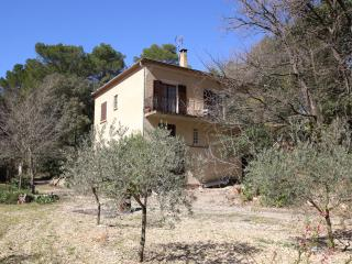 House w/ 6000sq m garden in Luberon - Pertuis vacation rentals