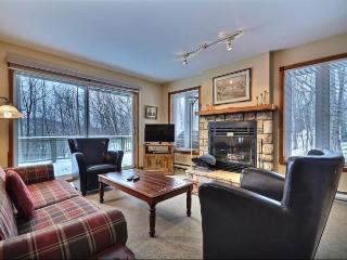 Comfortable 2 bedroom House in Mont Tremblant - Mont Tremblant vacation rentals