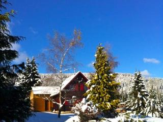 Bright 3 bedroom Orbey Ski chalet with Satellite Or Cable TV - Orbey vacation rentals