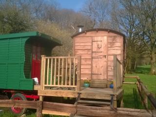 Alice Street Farm Shepherds Hut - Frome vacation rentals