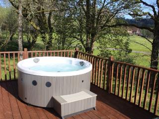 2 bedroom Cabin with Deck in Dalavich - Dalavich vacation rentals