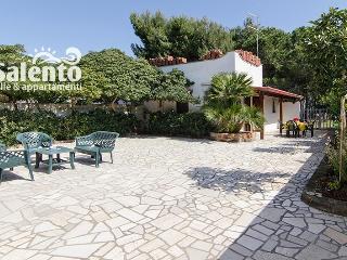 SP006 VILLETTA ITALIA 2D - San Pietro in Bevagna vacation rentals