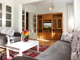 Unbeatable Location,Space&Comfort-2BR Splended Apt - Istanbul vacation rentals