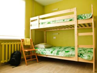 Comfortable 11 bedroom Krasnoyarsk Guest house with Internet Access - Krasnoyarsk vacation rentals