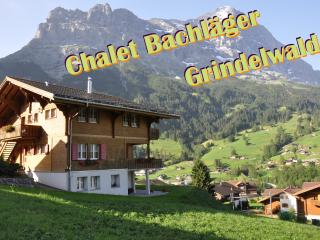 2 bedroom Condo with Internet Access in Grindelwald - Grindelwald vacation rentals