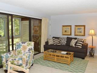 Seascape 3522 - Kiawah Island vacation rentals