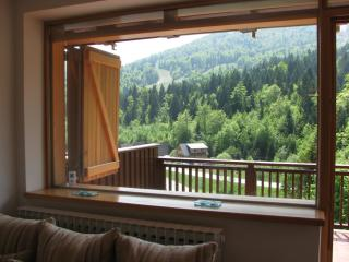 Apartment Mija  with mountain view on Bjelasnica - Bjelasnica vacation rentals