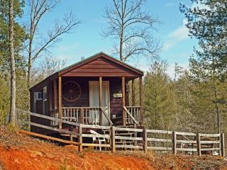 Cozy Cabin - Murphy vacation rentals