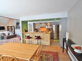 Bright 3 bedroom House in Bondville with Deck - Bondville vacation rentals
