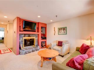 Beautiful 2 bedroom Stratton Mountain Apartment with Deck - Stratton Mountain vacation rentals