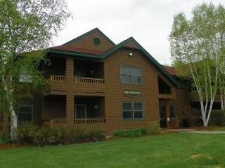 Deer Park Vacation Rental close to Recreation Center with Swimming Pond and Indoor Pool - Woodstock vacation rentals