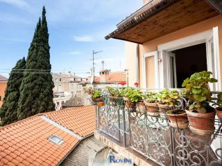 Apartment Carducci - Rovinj vacation rentals