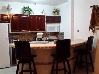 Cozy 2 Bed 1 Bath Apartment in Ladyville - Ladyville vacation rentals