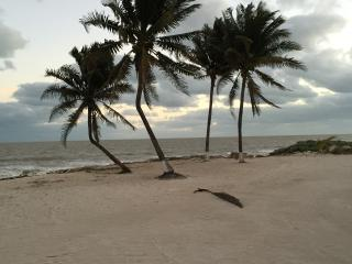 Beachfront Paradise in San Crisanto - Telchac Puerto vacation rentals